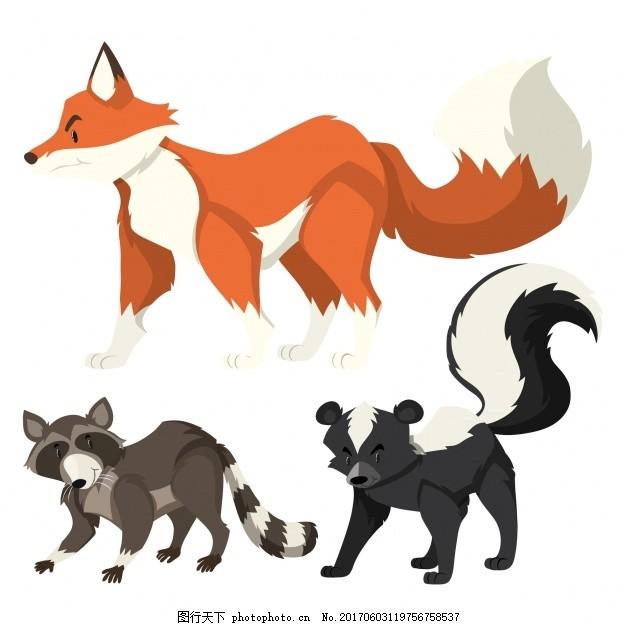 彩色的动物集合 颜色 狐狸 收藏 浣熊 有色 臭鼬