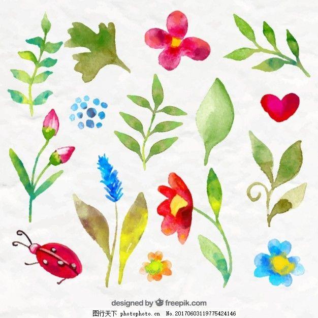 水彩花和树叶自然包装 水彩画 心手 水彩花卉 可爱 植物 昆虫