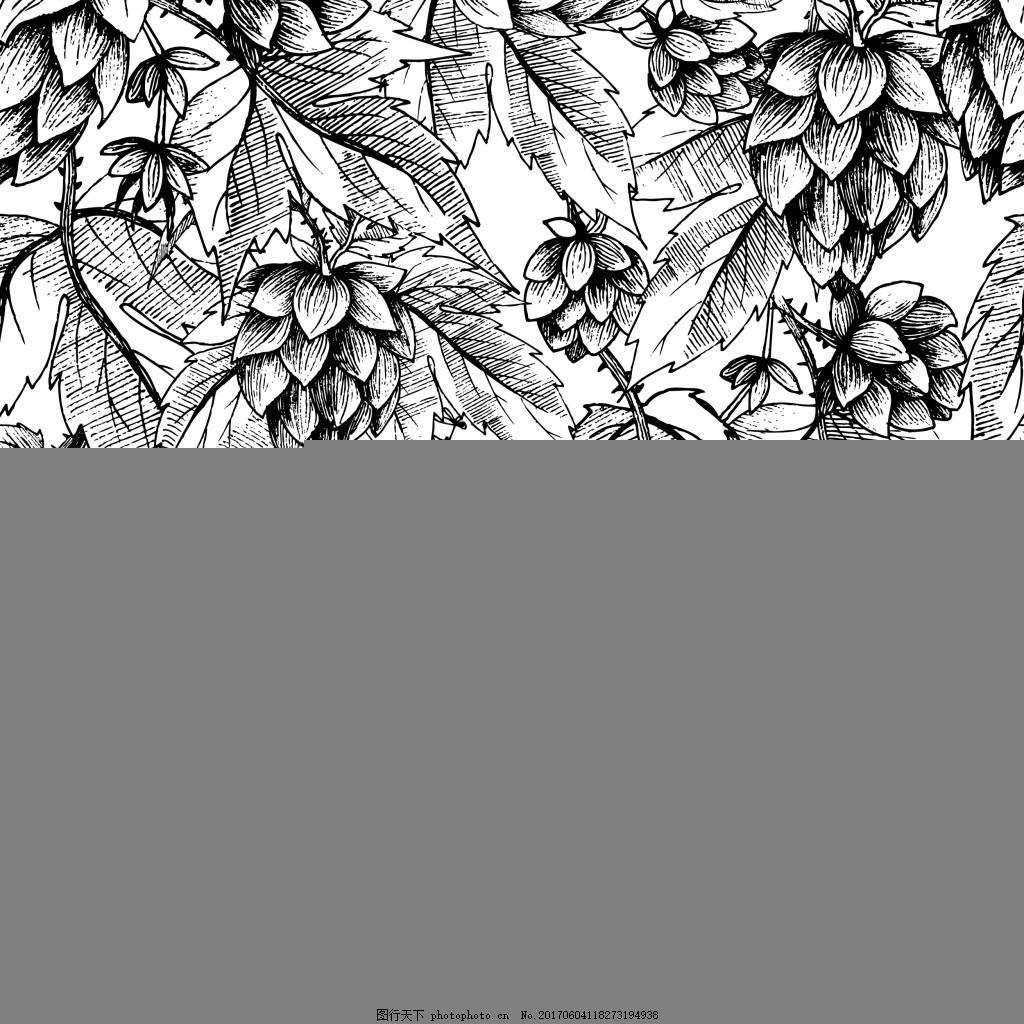 黑白啤酒花朵矢量素材 铅笔画 复古 小麦 手绘 线条 海报 宣传
