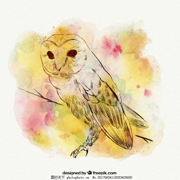 水彩背景手绘猫头鹰 自然 性格 鸟类 动物 羽毛 翅膀 绘画 野生