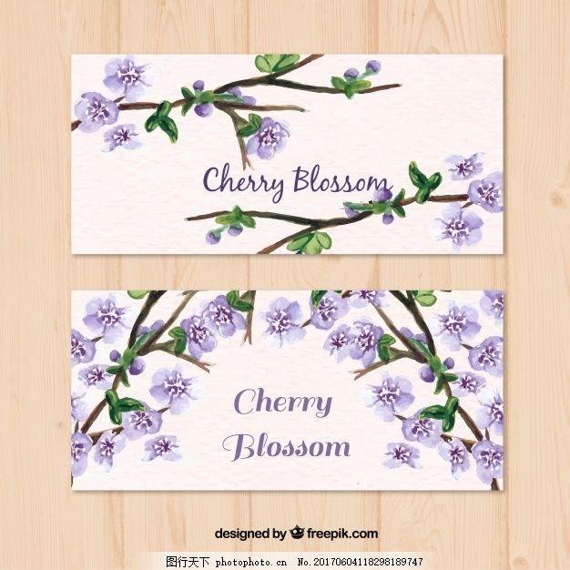 自然 水彩花卉 横幅 春天 植物 樱花 复古花卉 装饰 古典花卉 樱桃