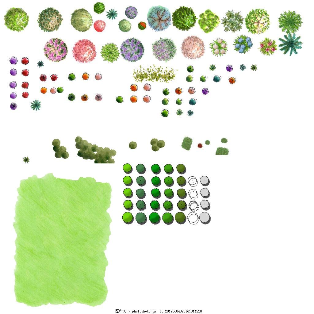 植物平面图素材--乔木 (8)