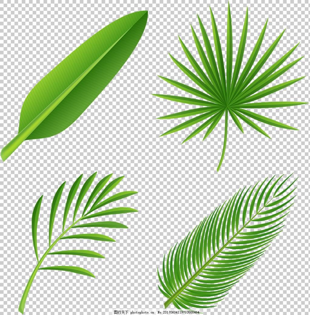 手绘棕榈叶子免抠png透明图层素材 树叶图案 扁平风格 水彩 植物
