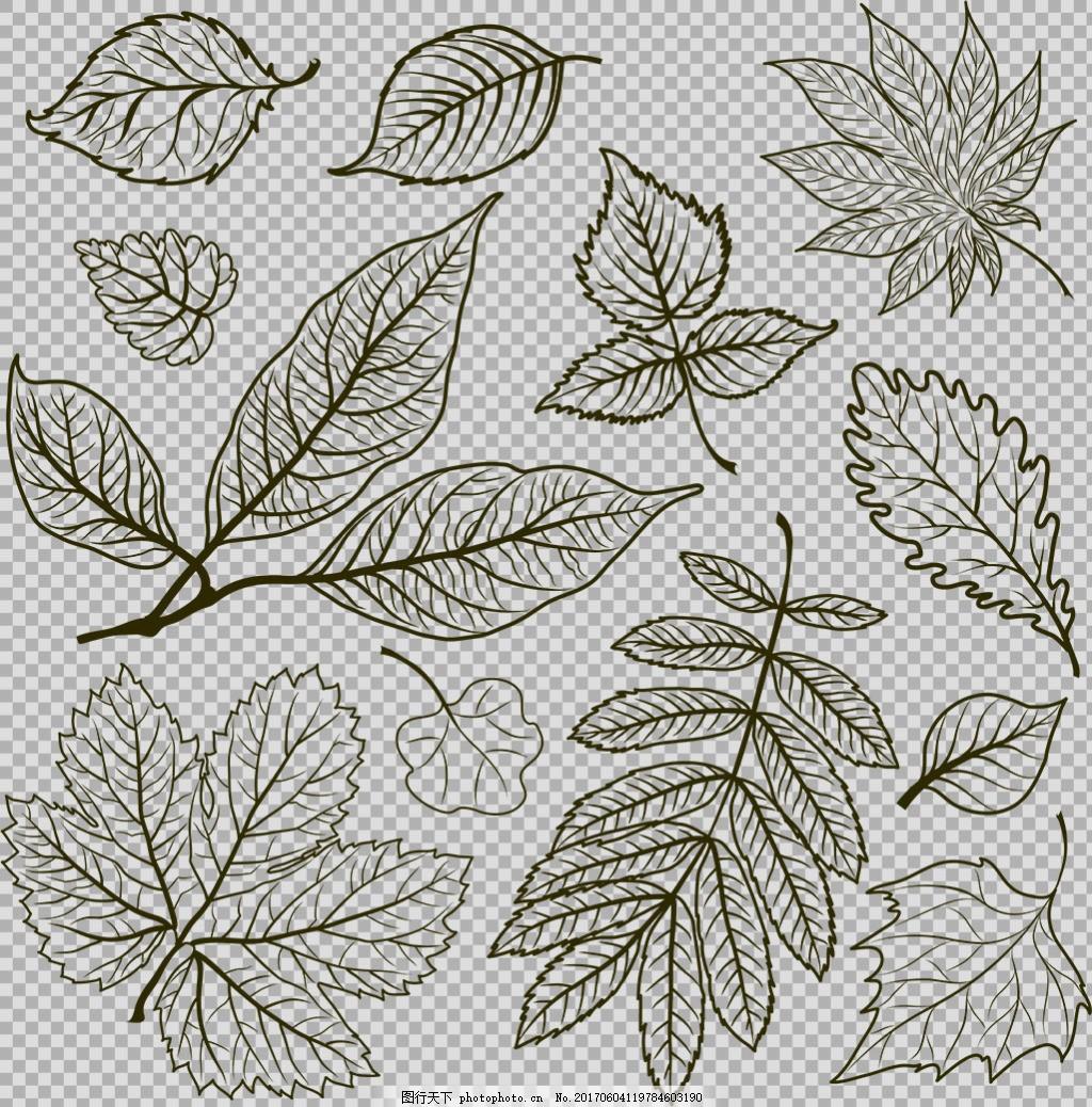 手绘素描风格叶子免抠png透明图层素材