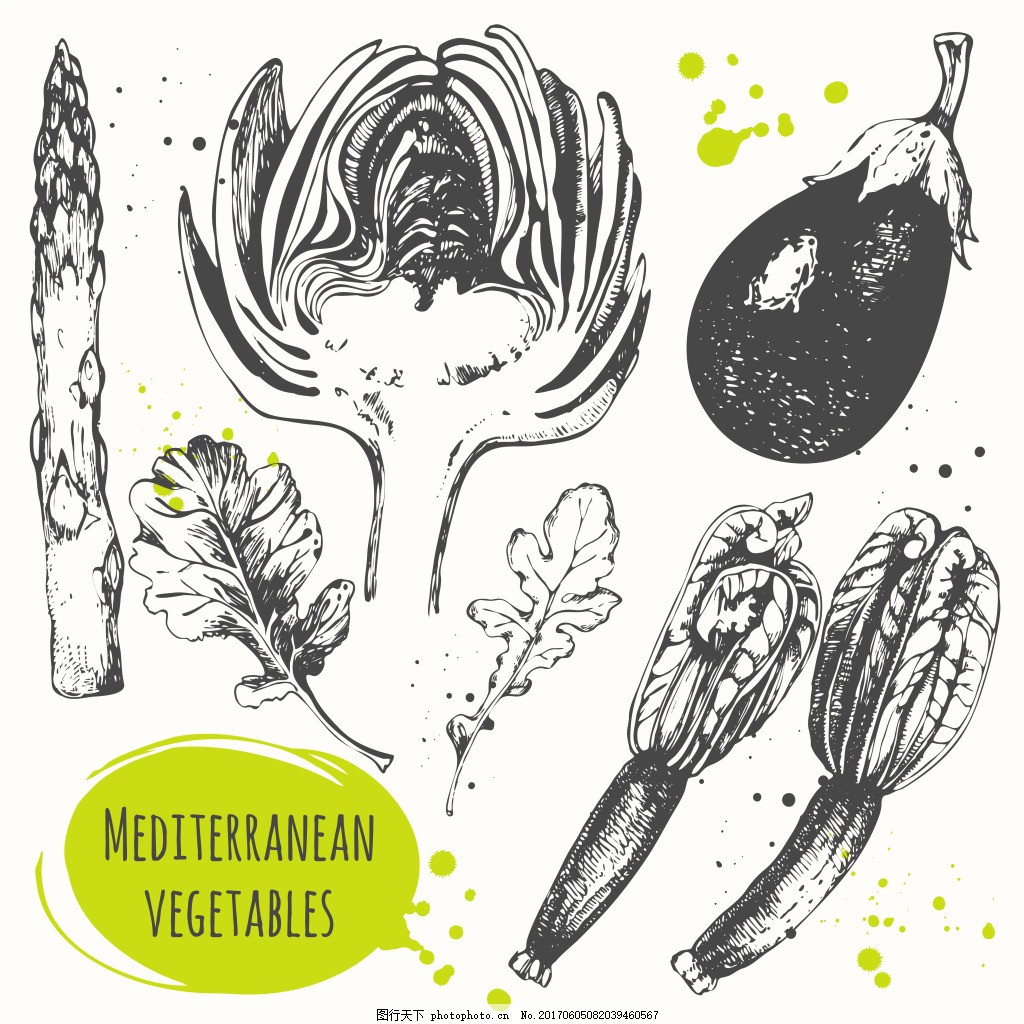 手绘蔬菜插画 芦笋 叶子 茄子 黄瓜 素描 速写
