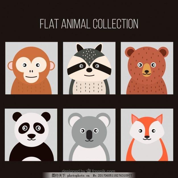 设计 几何 自然 动物 色彩 熊 扁 猴 装饰 圆 狐狸 平面设计 熊猫