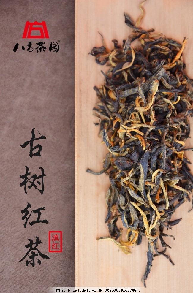 古树红茶 滇红 功夫红 祁红 正山小种 云南红茶 红茶条索 茶叶条索