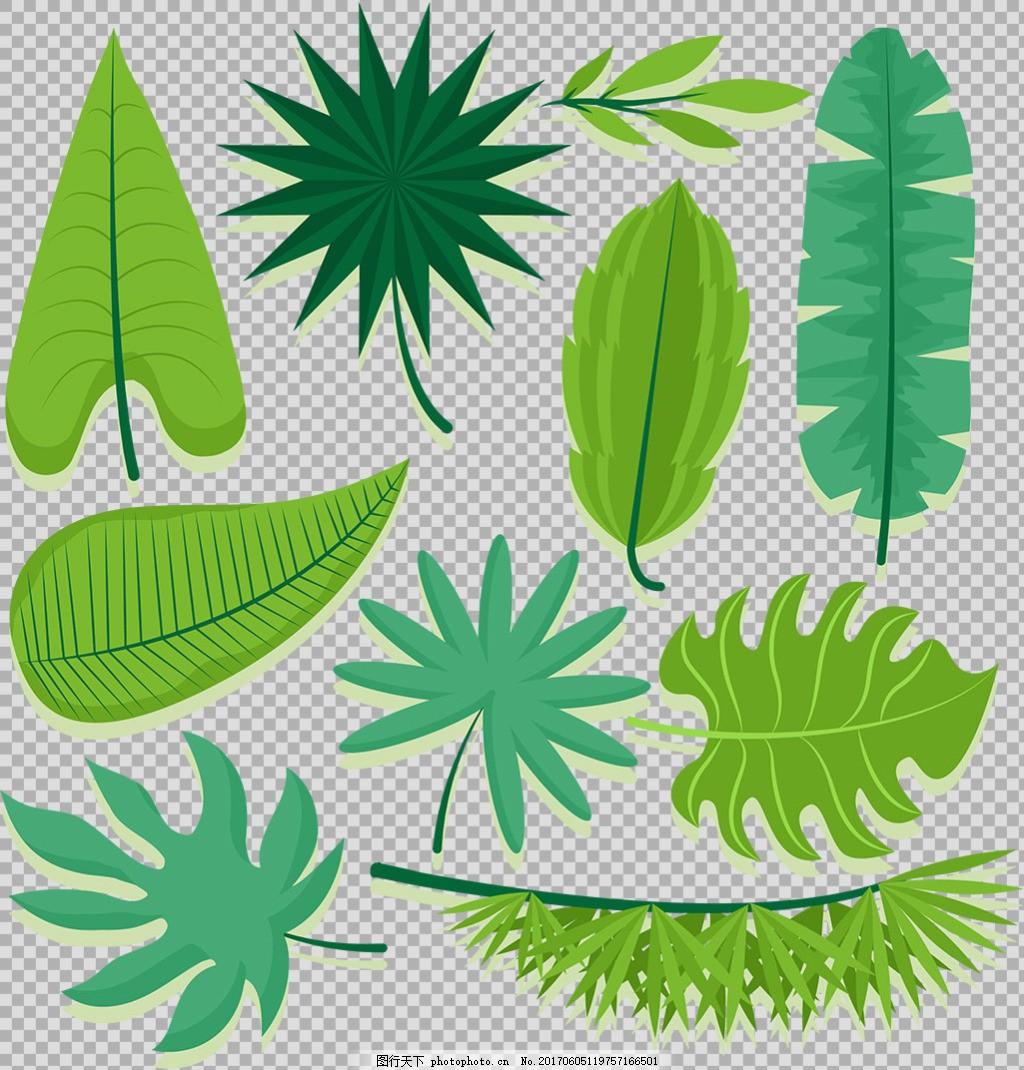 手绘各种绿色叶子插画免抠png透明素材