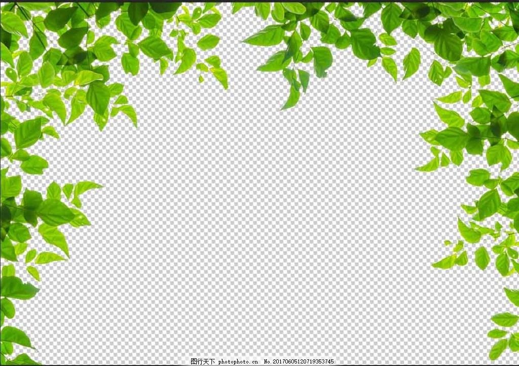 绿叶边框素材 清新 树叶 绿色图片