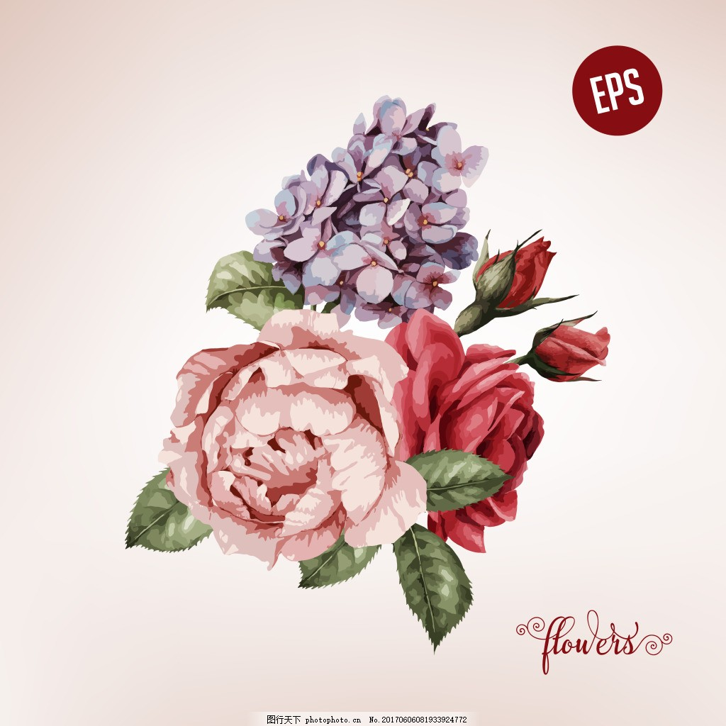 粉色玫瑰花 紫色蝴蝶兰 复古 唯美 玫瑰花 婚礼 爱情 婚庆 背景墙布置图片