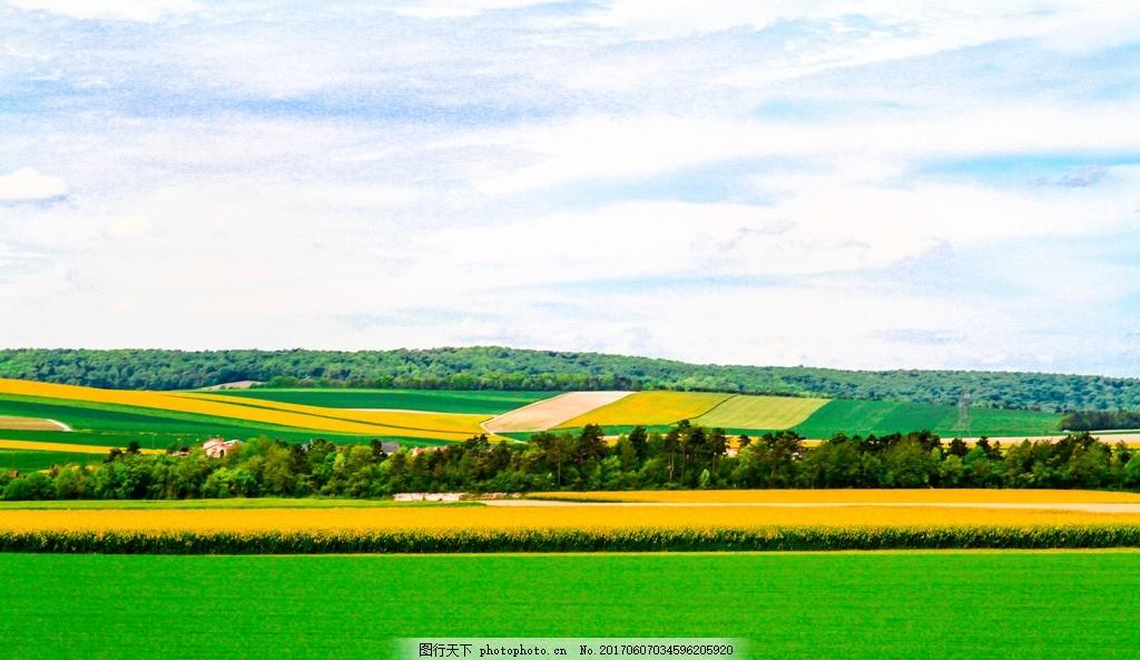 法国 巴黎 摄影 外国风光 田园风景 农村 树木植物 法国风光 法国农