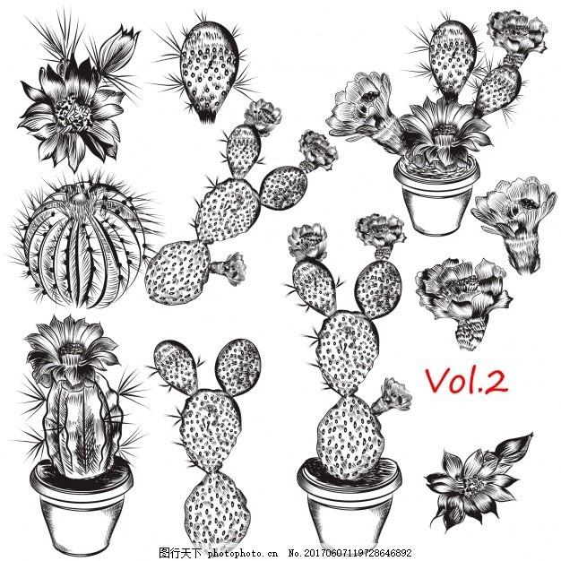 手绘植物和仙人掌的收集