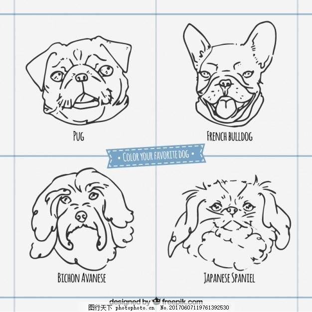 简略的狗繁殖面 手 自然 动物 手绘 脸 宠物 绘画 野生 粗略