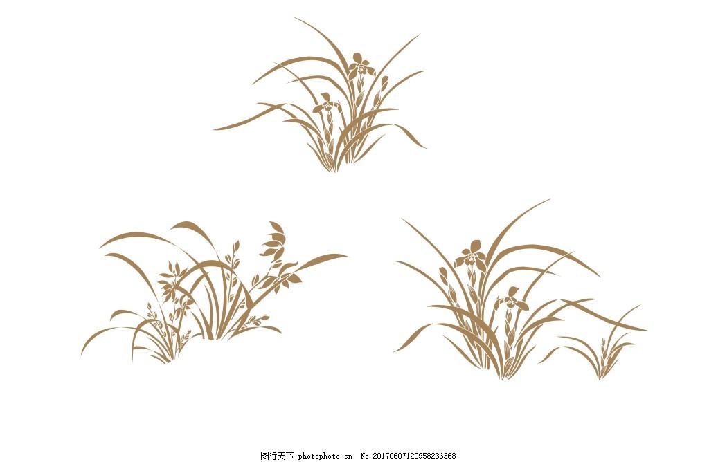 兰花 手绘 三种兰花