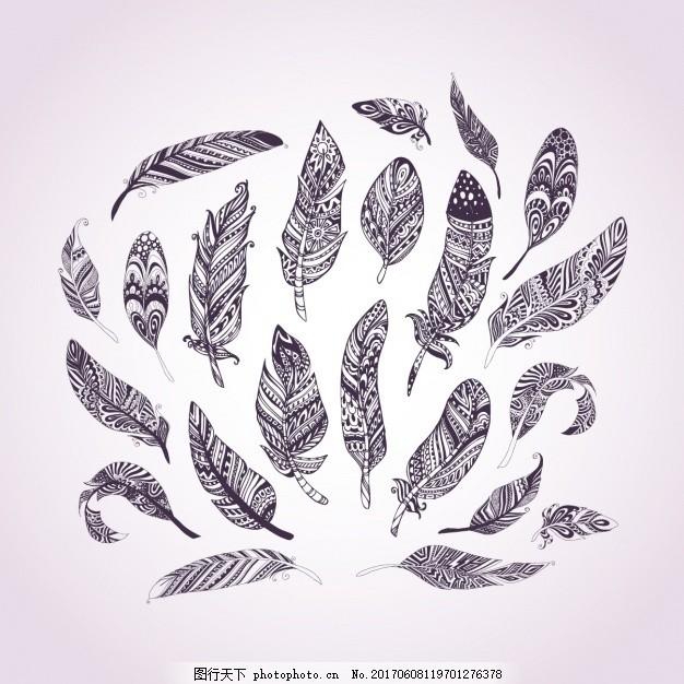 手绘羽毛收藏