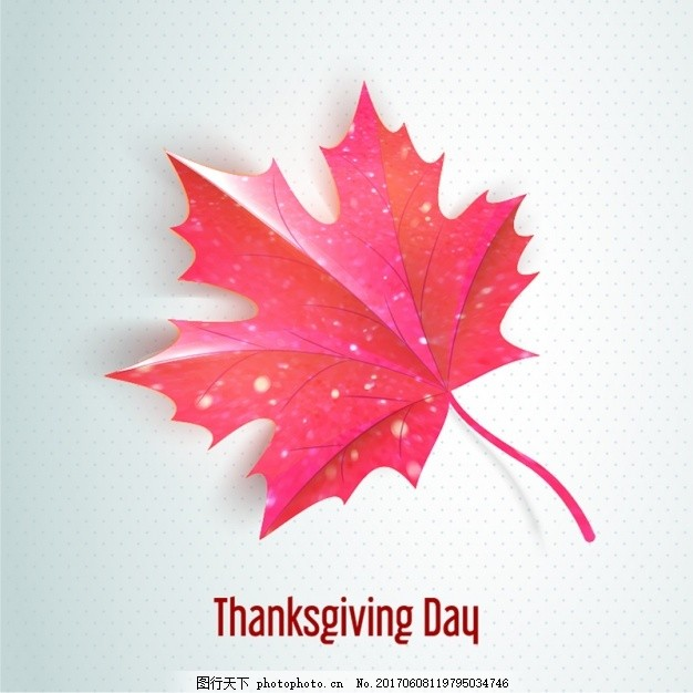 感恩节背景美丽的叶子 树叶 秋天 庆祝 快乐 节日 节日快乐 装饰