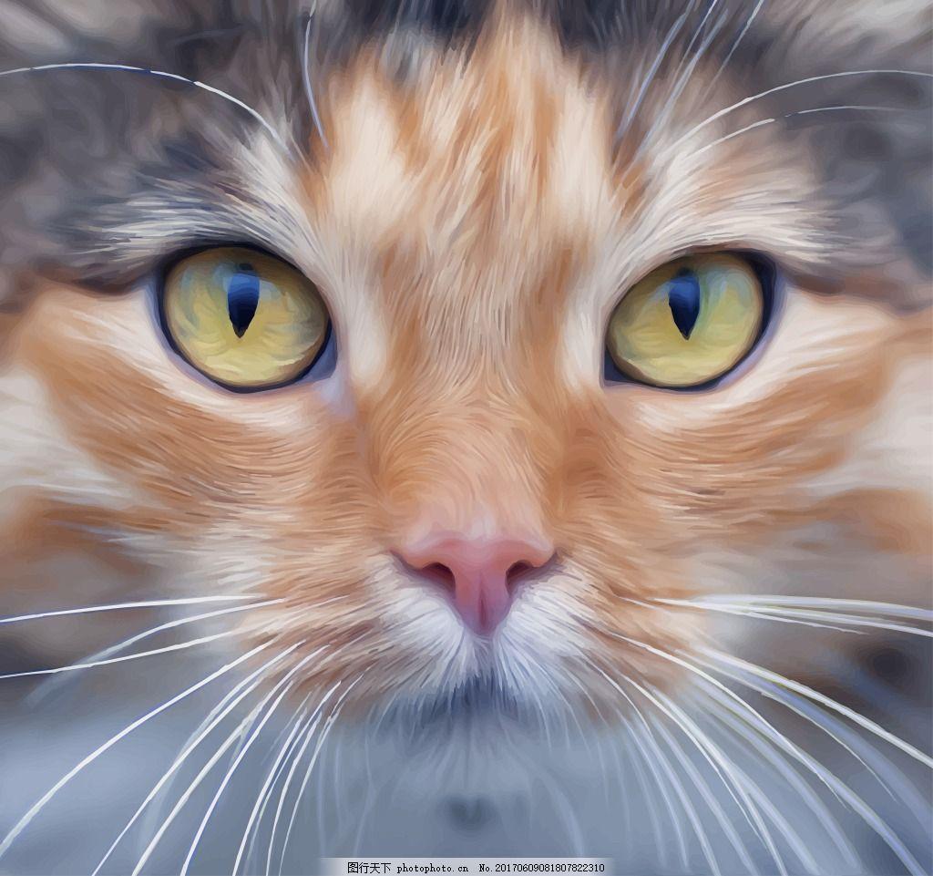 逼真猫咪头像 插画 写实 动物 小猫咪 可爱 冷饮