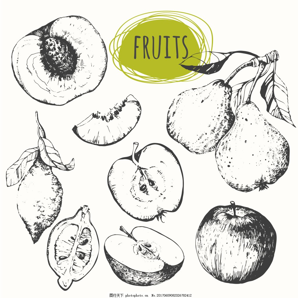 手绘水果 手绘 水果 素描 桃子 梨子 柠檬 苹果