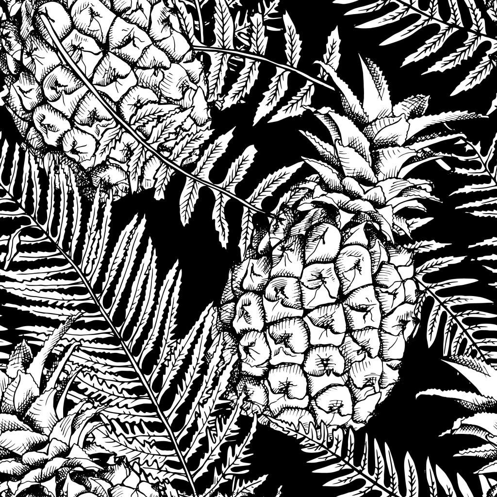 黑白菠萝背景
