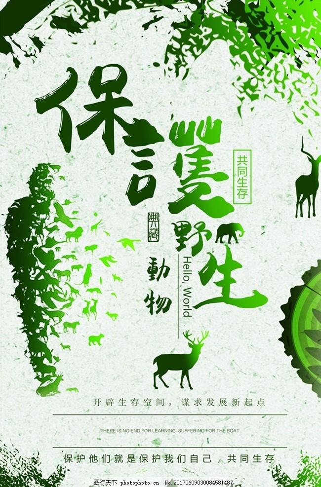 动物园展板 动物园广告 动物协会 爱护动物 动物世界 野生动物 生态