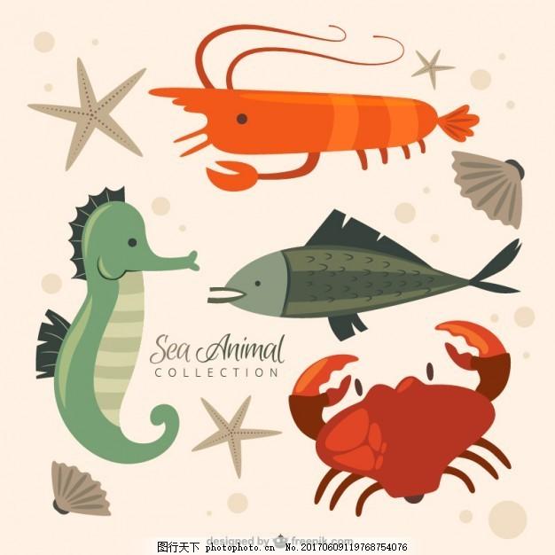 尼斯海洋动物系列 自然 鱼类 可爱 有趣 贝壳 可爱的动物 螃蟹