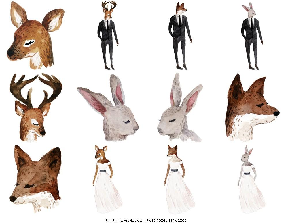 水彩动物 可爱 卡通 手绘 水彩绘 鹿 梅花鹿