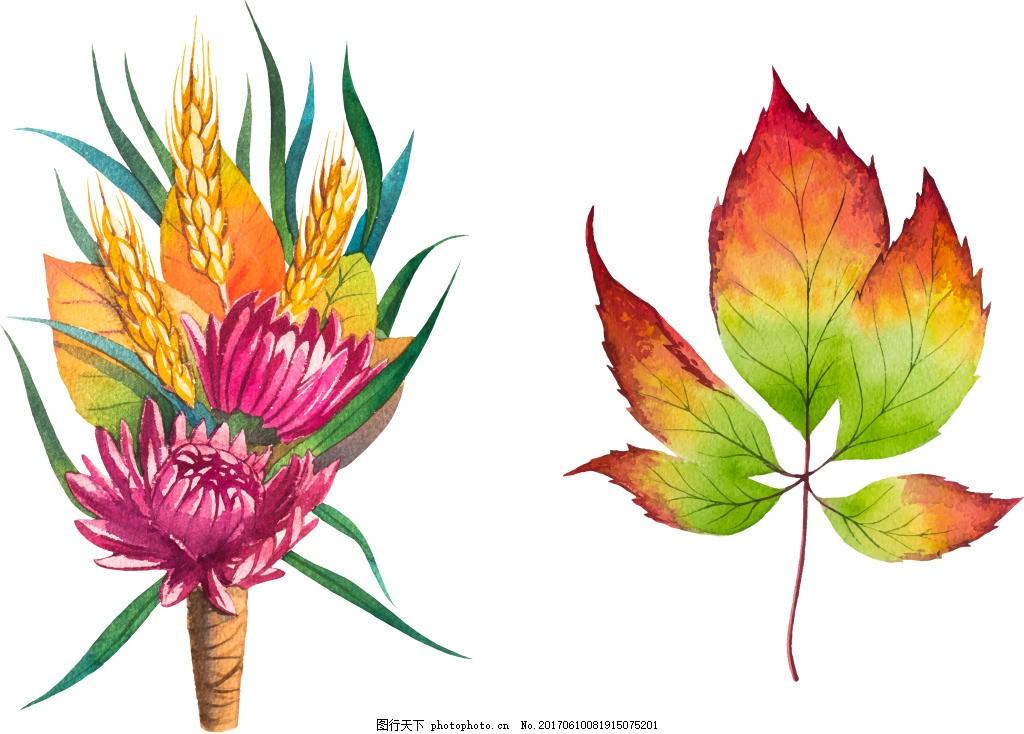 水彩绘花朵和叶子插画 手绘 植物 渐变 麦穗