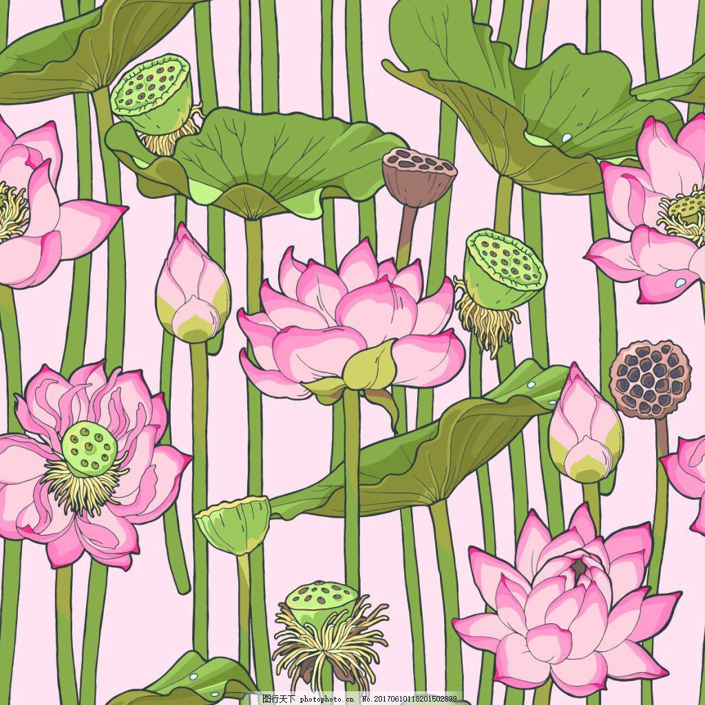 手绘荷花背景 底纹 植物 手绘 茶花 莲花 背景 夏天 莲蓬