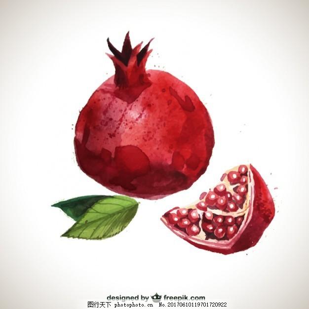 手绘的石榴 水彩画 食品 水果 健康 健康食品 美味 彩绘
