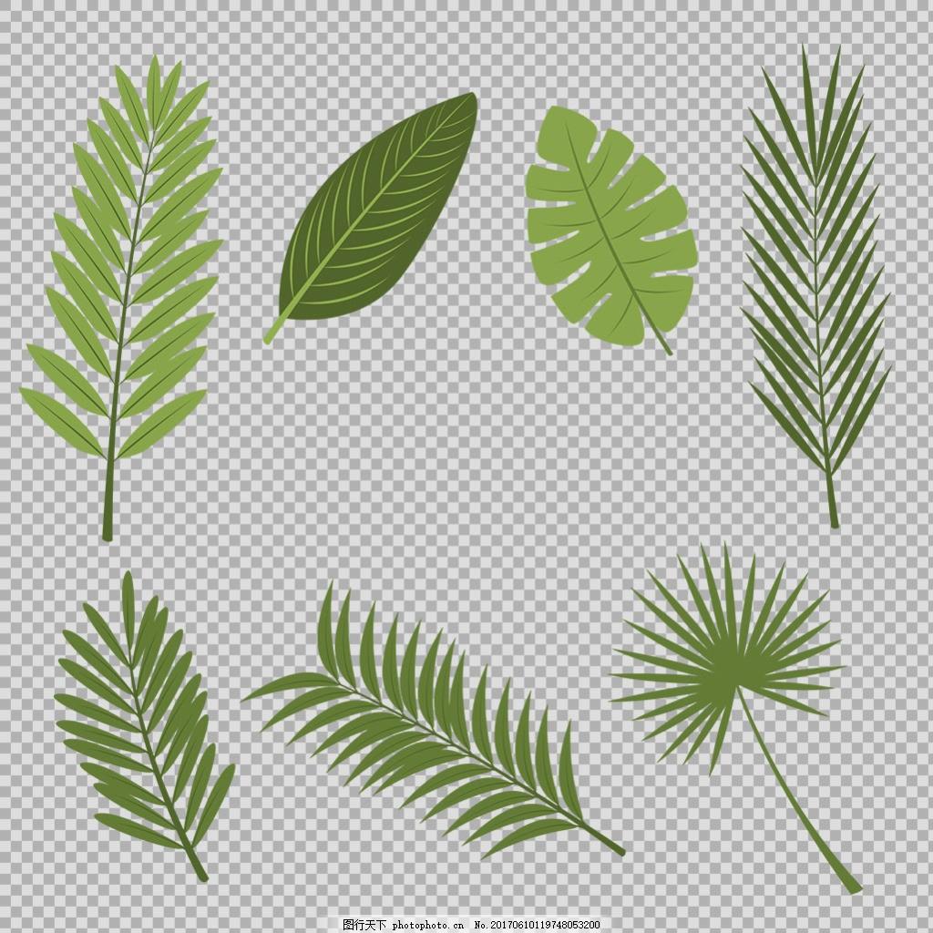 手绘各种叶子插画免抠png透明图层素材 春天素材 清新树叶 植物