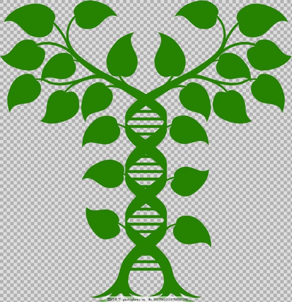 对称叶子插画免抠png透明图层素材