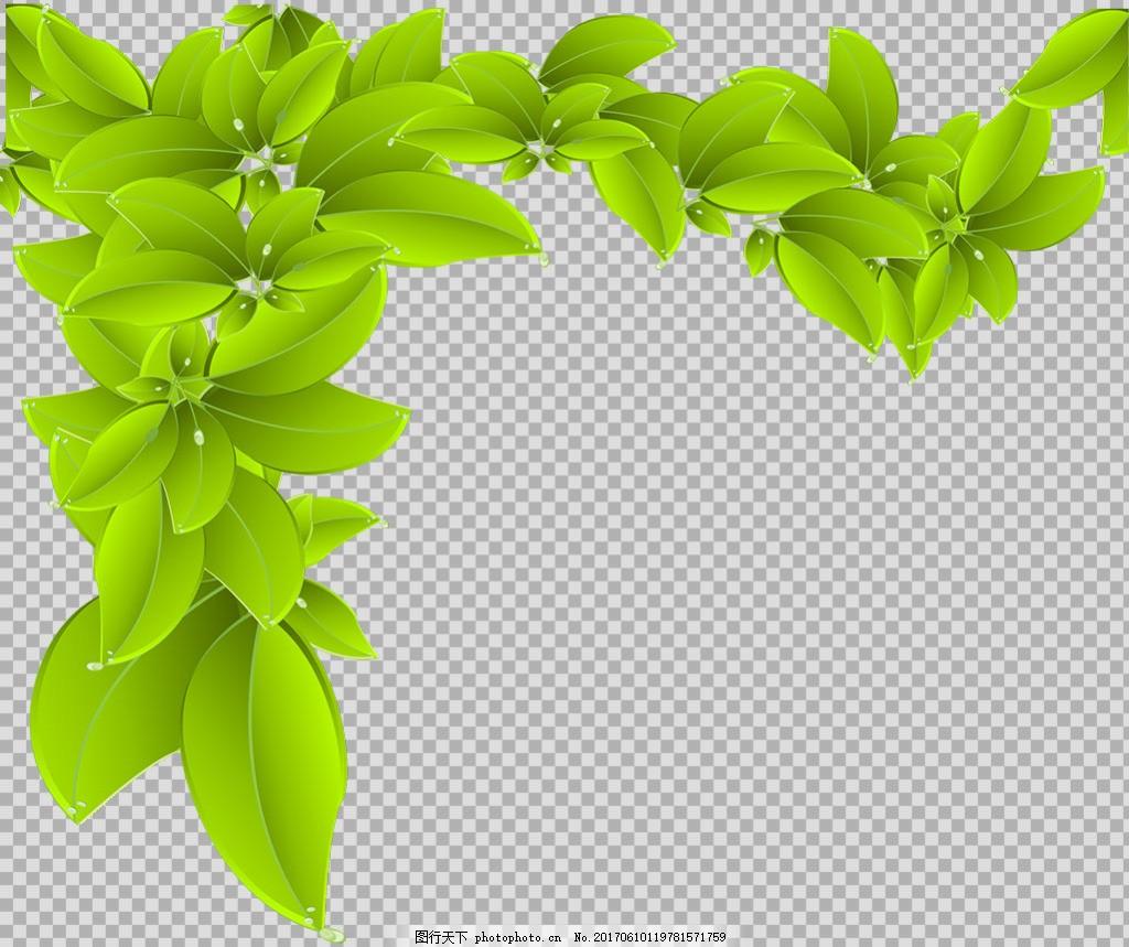 手绘叶子插画免抠png透明图层素材 春天素材 清新树叶 植物 绿色叶子