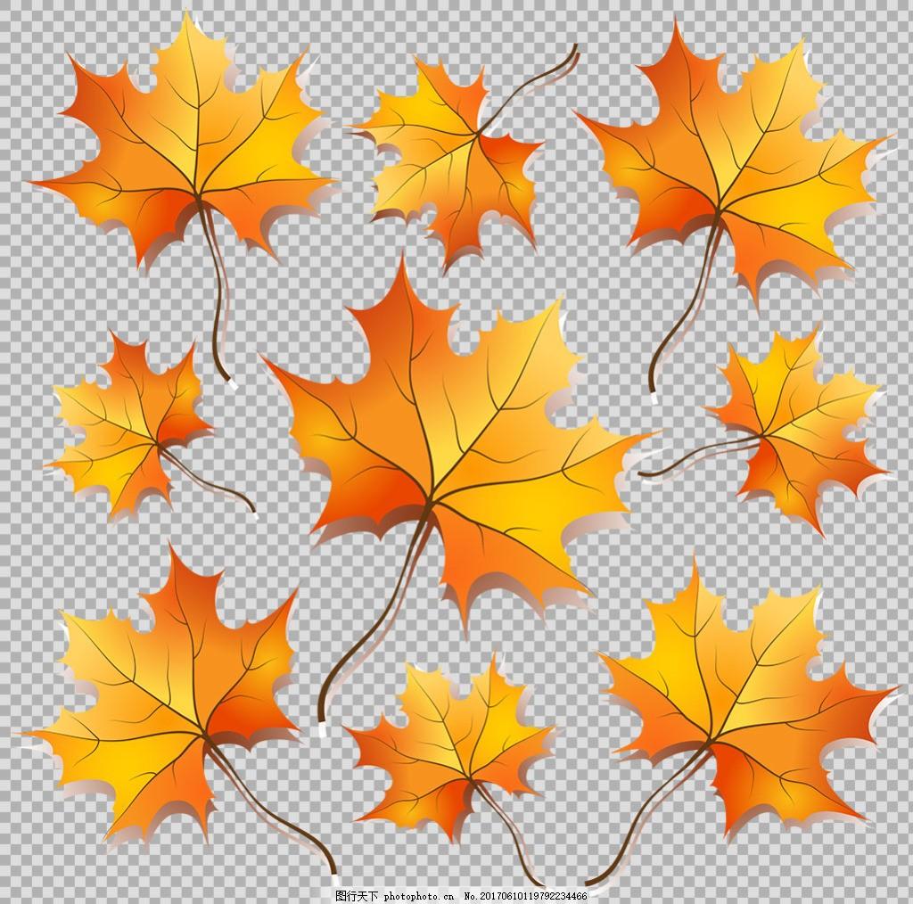 棕榈叶 花藤 叶子装饰 叶子边框 叶子花边 花藤树叶 边框素材 彩色