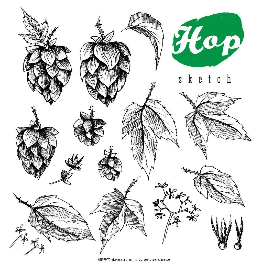 黑白 手绘 树叶 单个 装饰 复古 小麦 线条 海报 花朵 宣传 介绍 矢量
