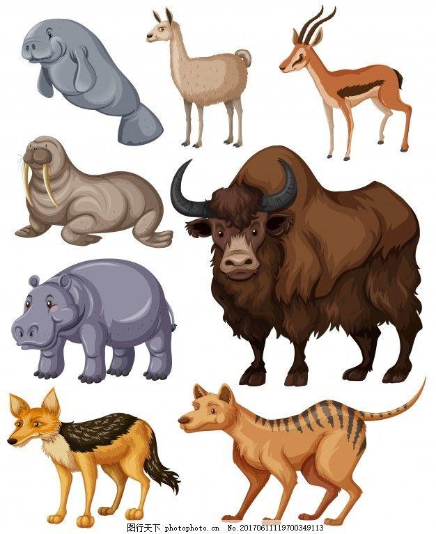 不同种类的野生动物插画