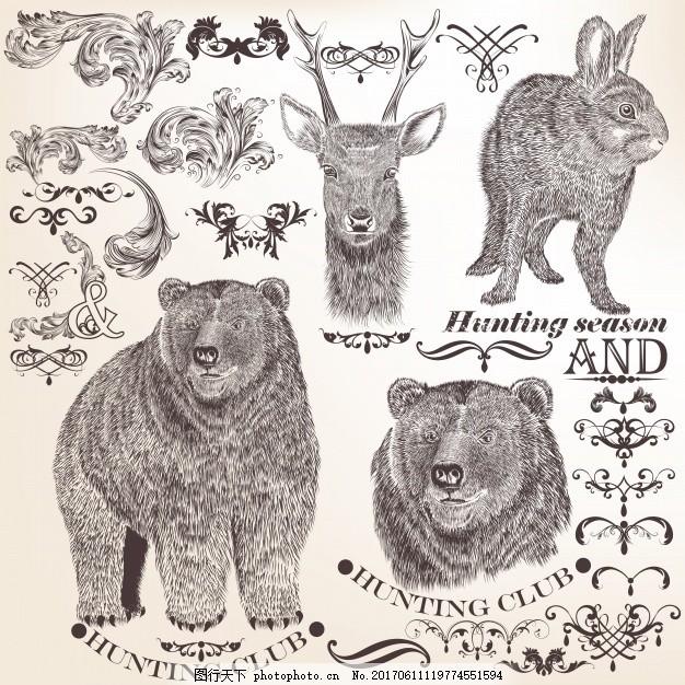 手绘动物系列 手 动物 手画 熊 素描 兔子 绘画 粗略 收集 设置 野兔
