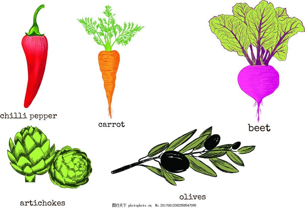 辣椒 胡萝卜 树枝 卡通 手绘 铅笔画 蔬菜 健康 矢量 素材