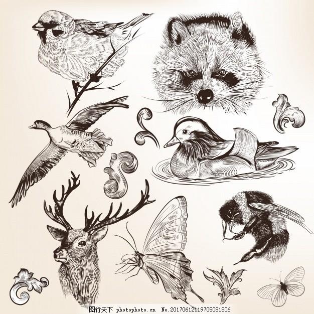 手绘动物系列