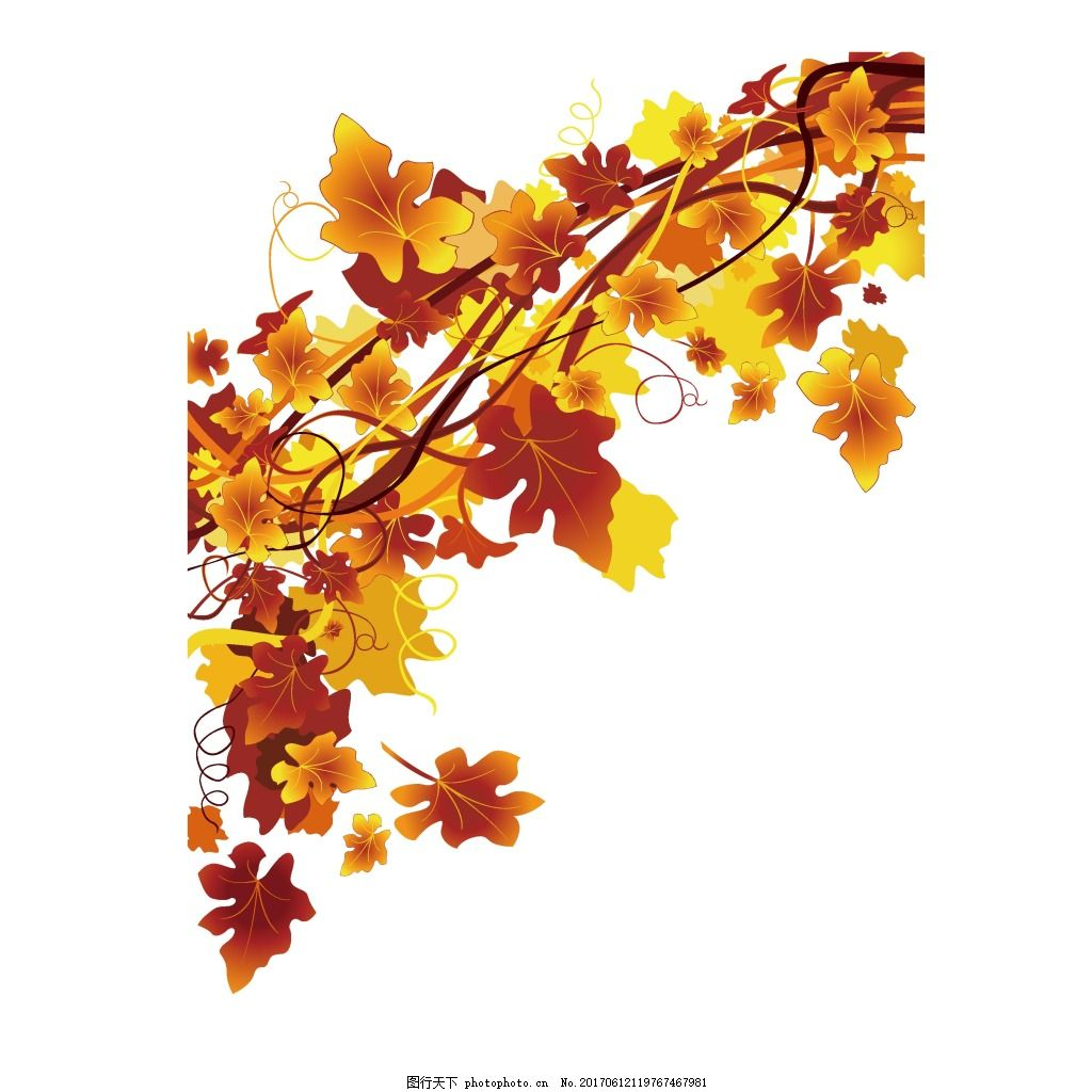 手绘金秋树叶元素