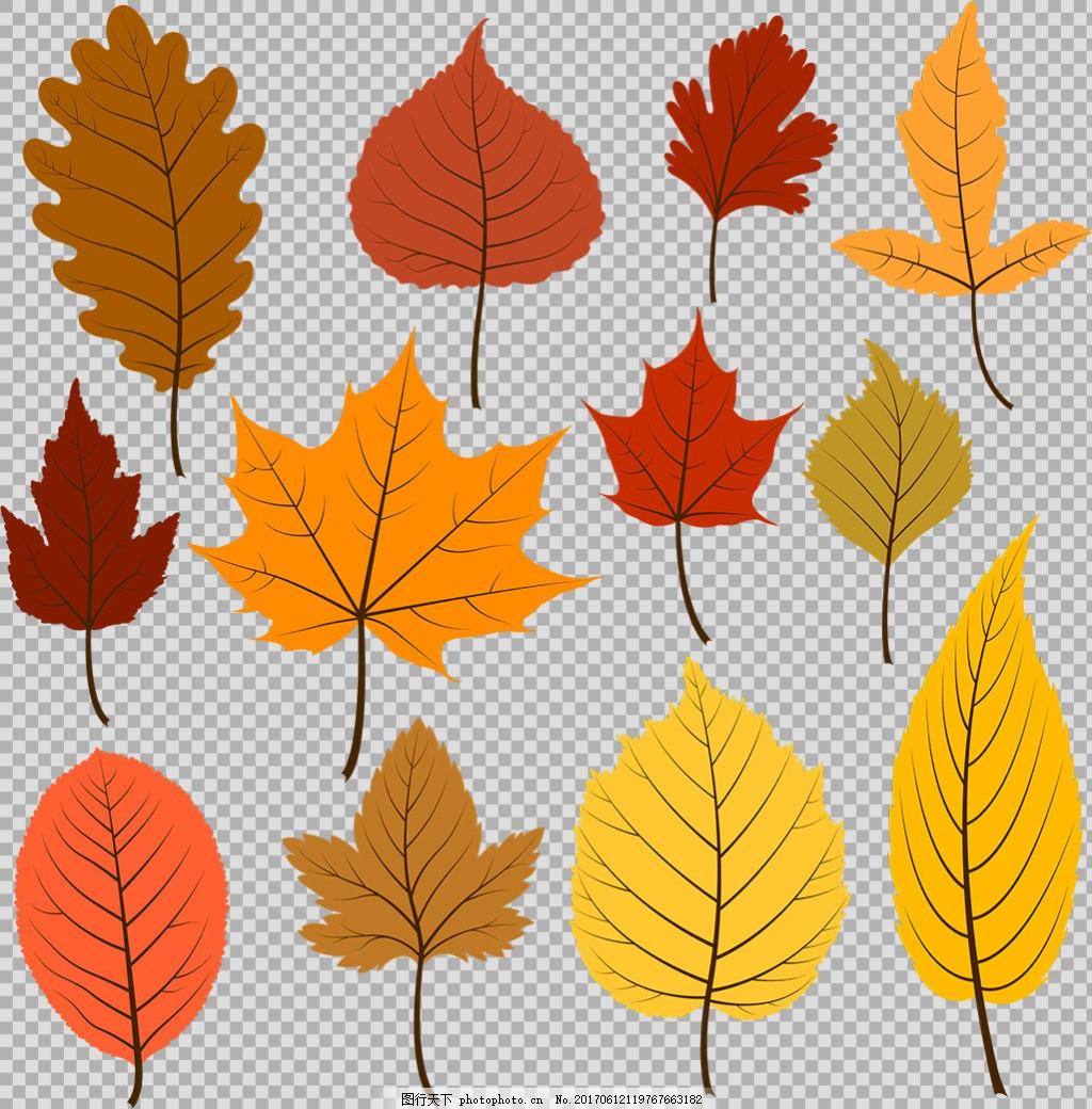 卡通叶子 棕榈叶 花藤 叶子装饰 叶子边框 叶子花边 花藤树叶 边框
