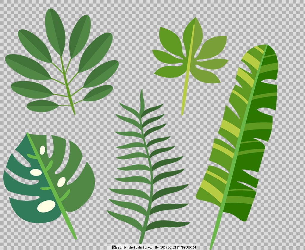 绿色叶子插画免抠png透明图层素材 春天素材 清新树叶 植物 绿色树叶