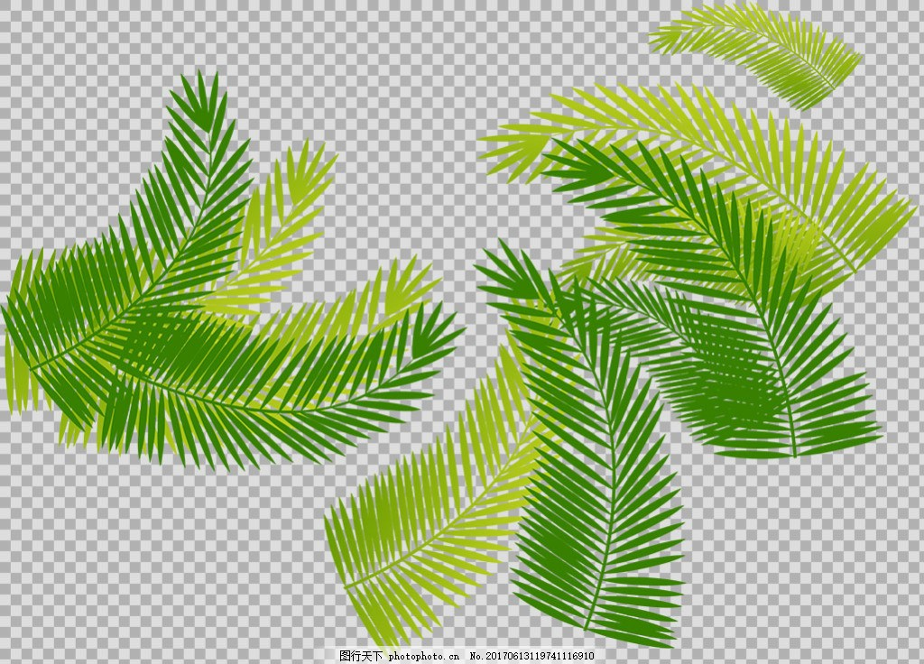 手绘棕榈叶子插画免抠png透明图层素材