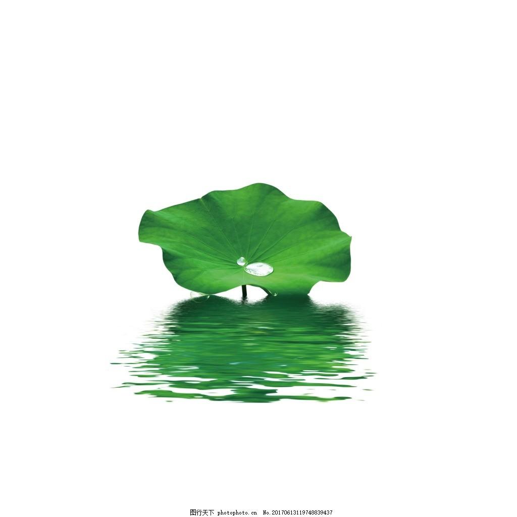 手绘绿色荷叶元素 手绘 水墨 清新 绿色 荷叶 素材
