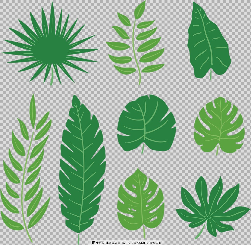 各种叶子插画免抠png透明图层素材