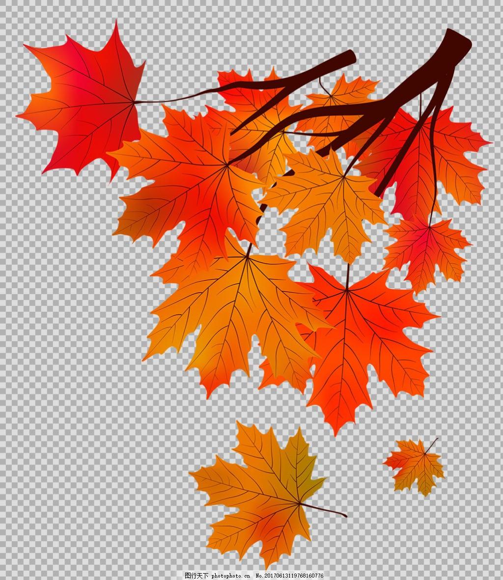 手绘红色枫叶免抠png透明图层素材