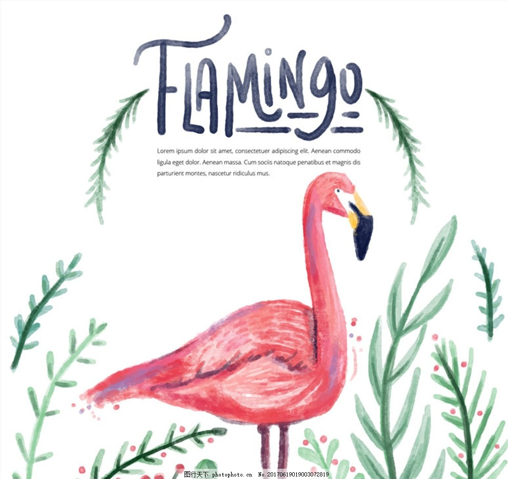 水彩绘粉色火烈鸟矢量素材 动物 叶子