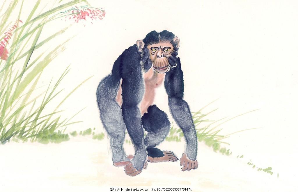 猴 猴子 水墨动物 鸟语花香 水墨画 水墨风格 中国风 麻雀 高清绘画