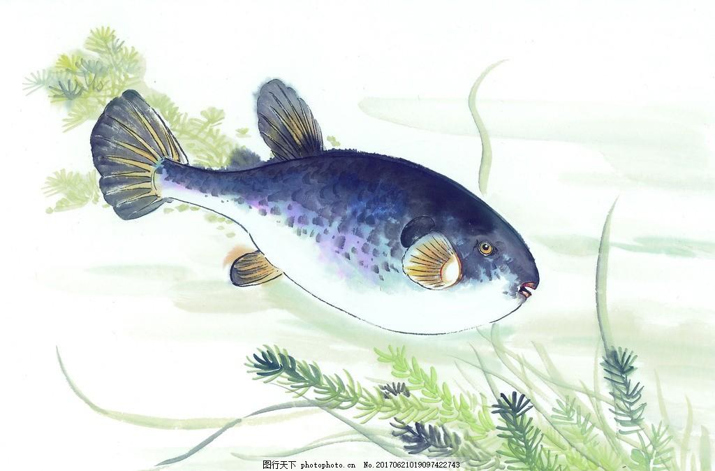 中国风 麻雀 高清绘画 色彩绘画 水墨色彩 古典艺术 鱼 设计 文化艺术