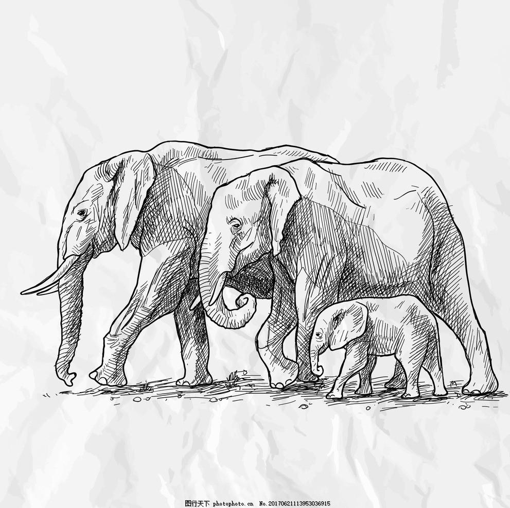 卡通素描大象矢量 广告设计 卡通设计 矢量手绘 卡通动物公仔 动物