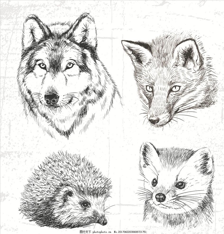 潮牌设计 面料印花 布料印花 手绘动物 素描动物 手绘狼 狼头 手绘